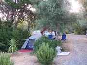 tents on the property