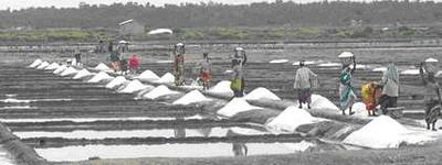 india_sea_salt_2_400