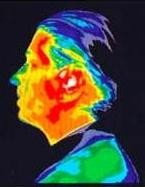 thermo_immage_human_head_after_15min_mobile_phone_use