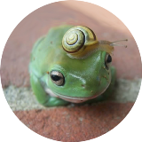 frog_with_snail_spiral_circle_xs